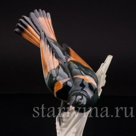 Уцененная статуэтка из фарфора Американская горихвостка, Hutschenreuther, Германия, сер. 20 века.